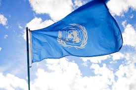 Defending the Family at the UN: A Video from Dr. Tim